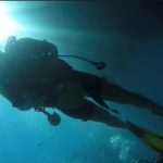 divesicily open water course